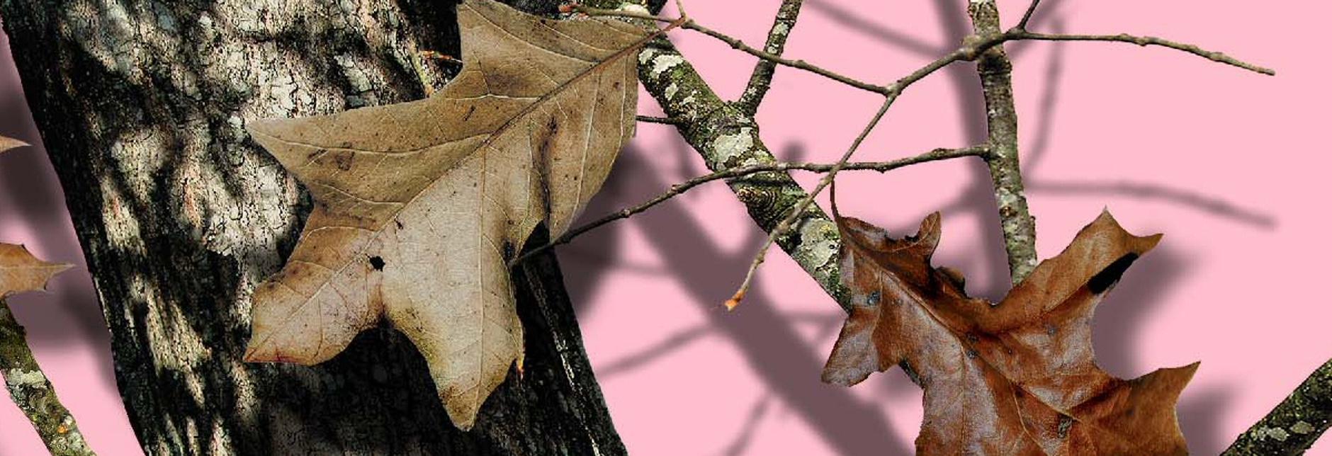 pink-camo-mossy-oak-wal.jpg